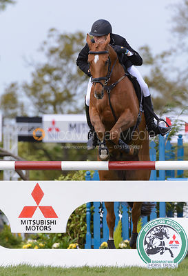Nick Gauntlett and GRAND MANOEUVRE - Show Jumping phase, Mitsubishi Motors Badminton Horse Trials 2014