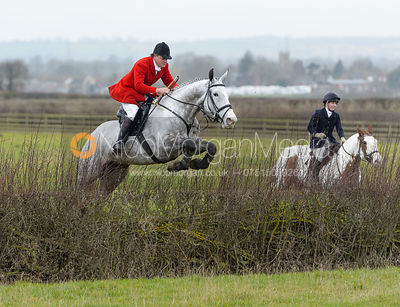 David Bellamy jumping a hedge at Sheepwash - The Belvoir at Mount Pleasant