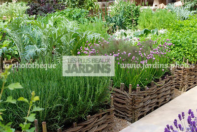 Allotment, Aromatic plant, Chives, Condiment, Digital, Mini potager, Mini Vegetable garden, Vegetable patch, Vegetable plot, ...