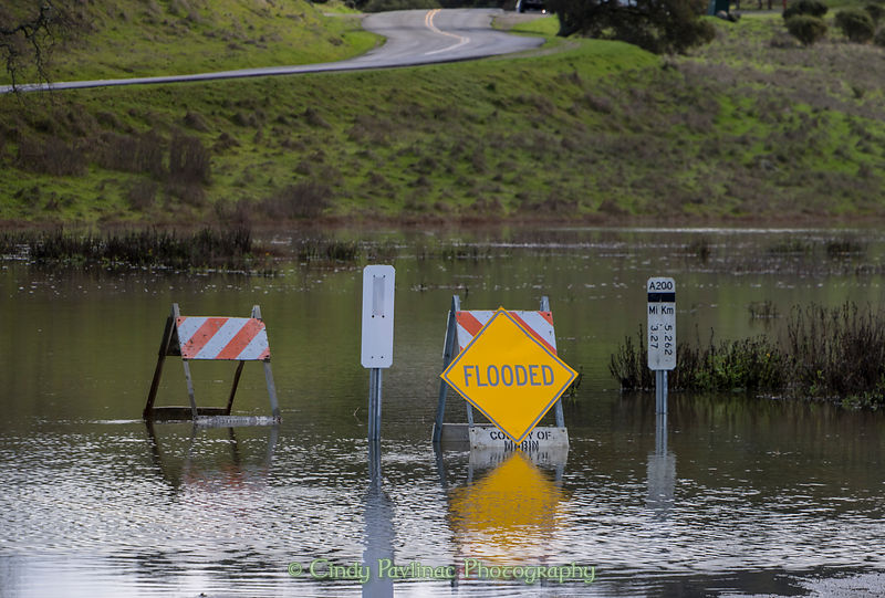 King Tides Flood Marin County
