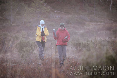 Hikers in mist