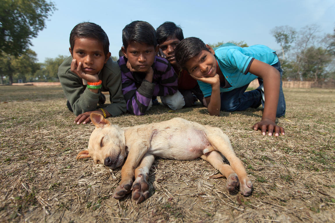 Children pose near a stray dog puppy sleeping in the grass at the Sarnath archaelogical site, India