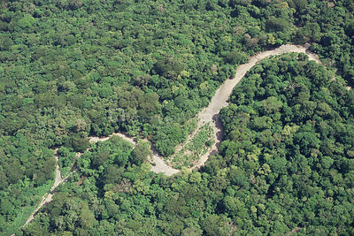 Aerial view of tropical dry forest with dry river bed, Santa Rosa National Park, Costa Rica