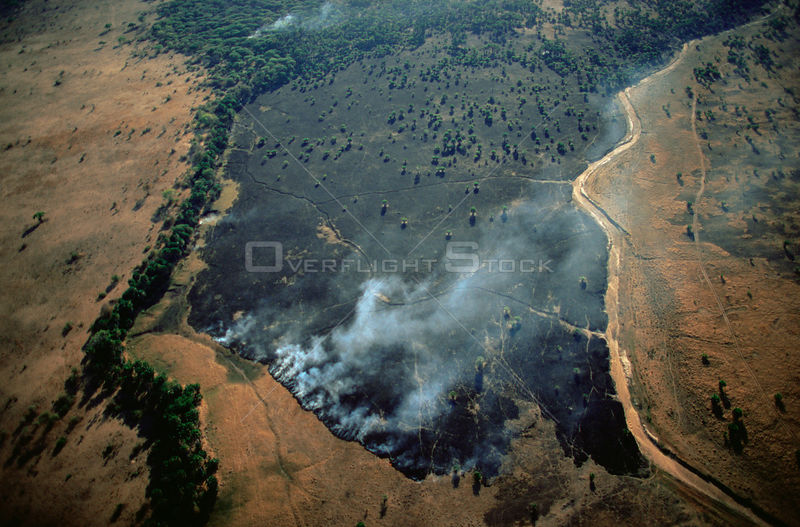 Aerial view of bush fire in woodland savanna during dry season, Katavi National Park, Tanzania