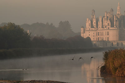 Chambord, grand canal