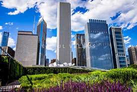 Downtown Chicago Flower Garden
