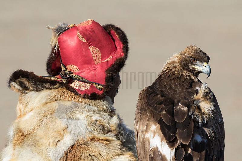 Portrait of an Eagle Hunter with his Eagle