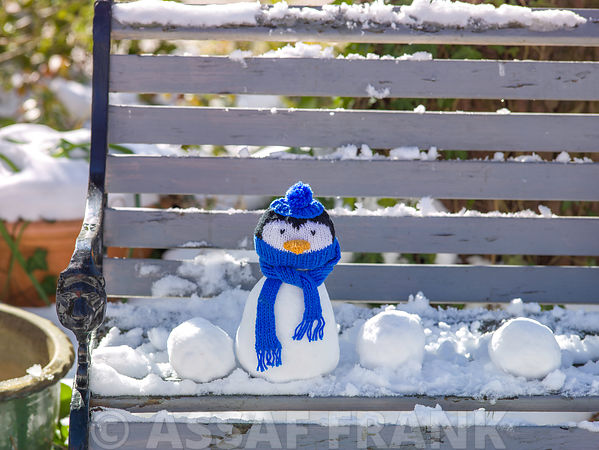 Snowman penguin on bench covered with snow outdoors