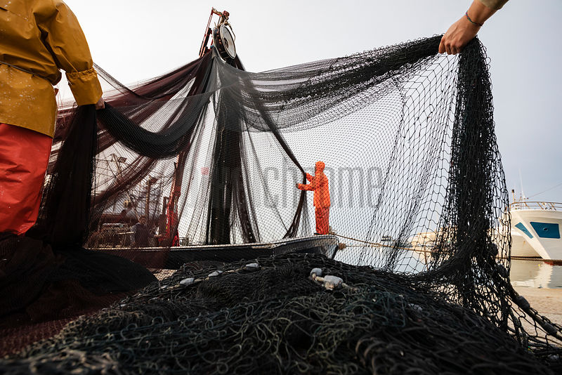 Fishermen Unloading and Sorting the Trawler Nets after Returning to Harbour