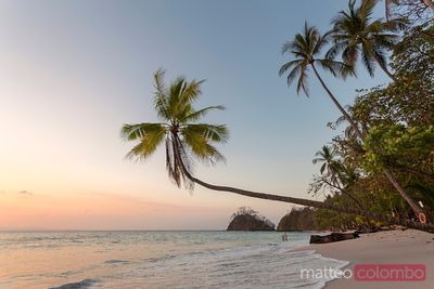 Sunset on tropical beach with palm trees, Costa Rica