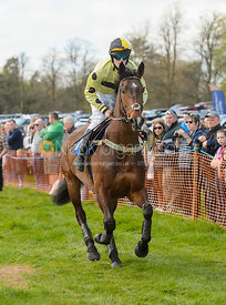 Race 1 Members - The Atherstone Point-to-point 2017