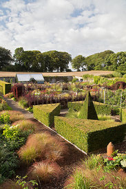 Overview of walled garden featuring pyramid and triangular yew topiary, ornamantal grasses and rich late herbaceous planting