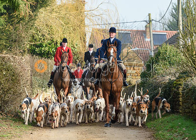 George Pierce, hounds arriving at the meet. The Belvoir Hunt at Springfield Farm 23/2