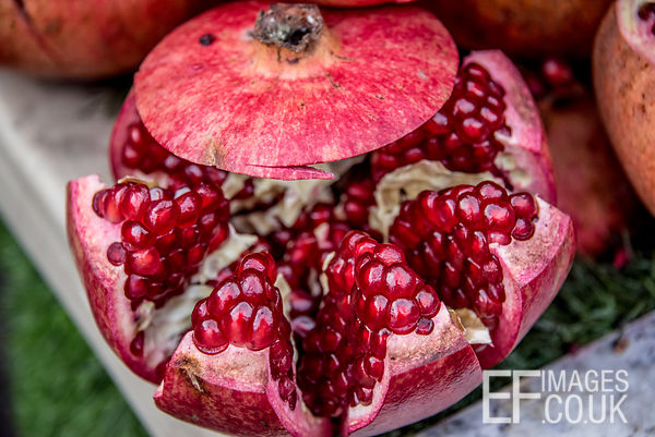 Gorgeous Pomegrate