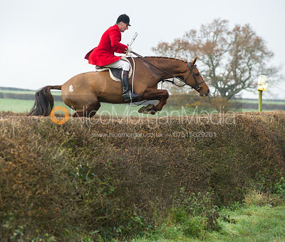 Joss Hanbury jumping a big hedge