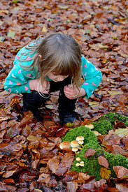 Young girl looking at fungi in autumn Norfolk