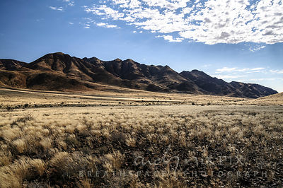 Desert hills covered in dry brown grasses