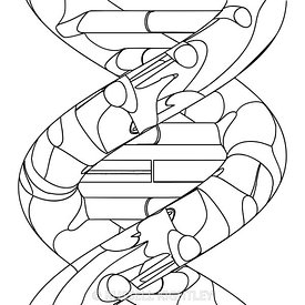 DNA 13 Outline