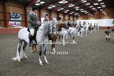 South East Arabian Horse Group - Spring Show 2015