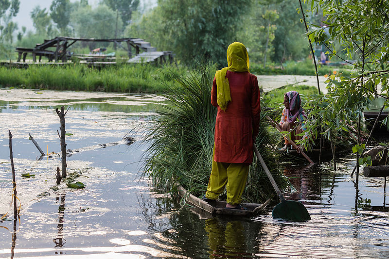 Women on Shikaras in Dal Lake