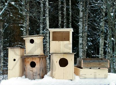 Nest Boxes for Owls