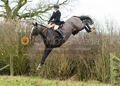 Holderness Hunt