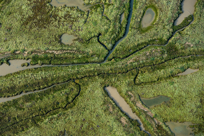 Aerial view of La Guittiere Marsh, South Vendee, France, July 2017.