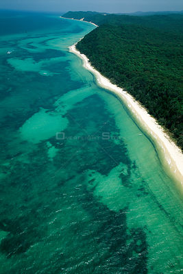 Aerial view of coast near Brisbane, with rainforest meeting the sea, Queensland, Australia