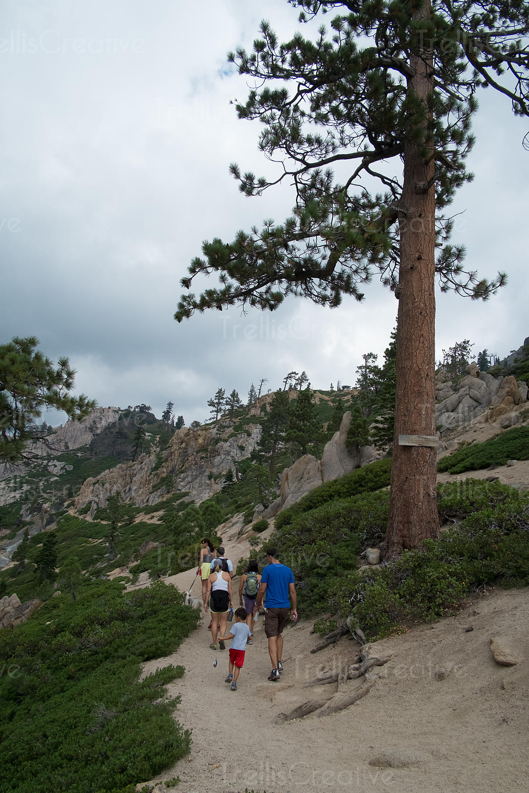 Rear view of people hiking on a trail, California, USA