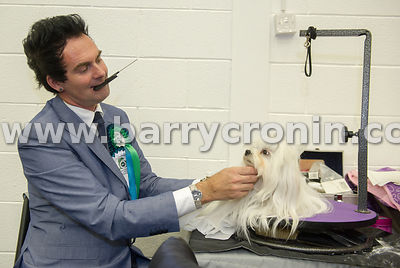 5th October, 2014.IKC (Irish Kennel Club) International show at Cloghran, Dublin. Pictured is Martin Bailey from Kildare  wit...