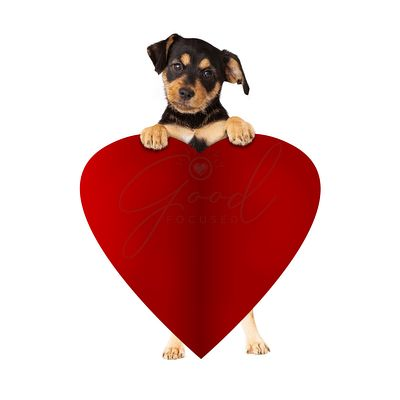 Puppy Holding Blank Valentines Paper Heart