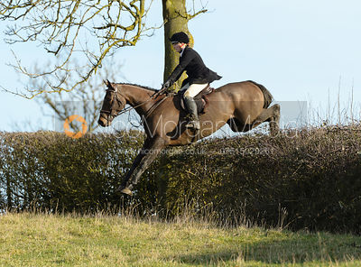 Hermione Brooksbank jumping a hedge near Ladywood - The Cottesmore at Priory Farm