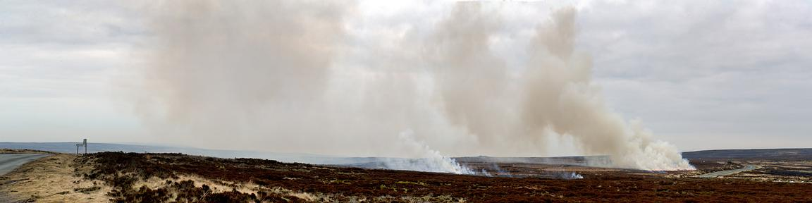 Burning moorland