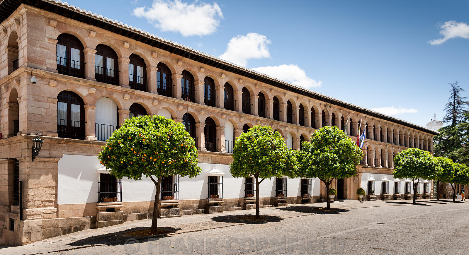 Orange trees outside City Hall Duchess of Parcent Square Ronda Andalusia Spain