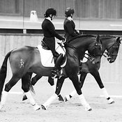 Gaynor Colbourn Dressage to Music Demo