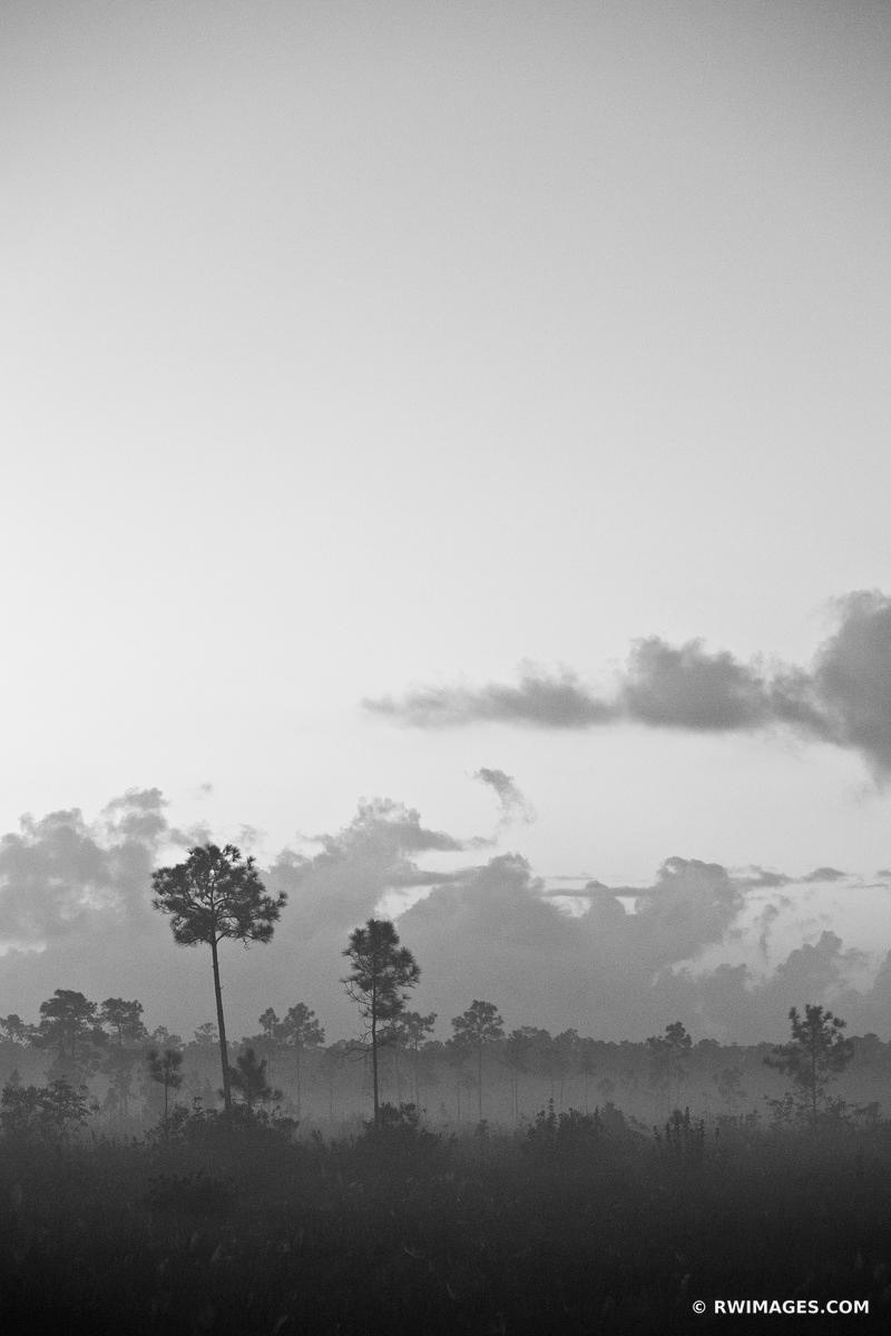 DAWN EVERGLADES NATIONAL PARK FLORIDA VERTICAL BLACK AND WHITE