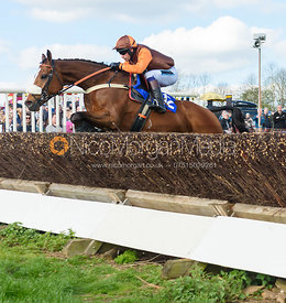 Race 5 Intermediate - The Atherstone Point-to-point 2017