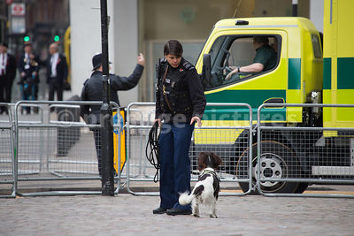 Police Dog Handler  with her Sniffer Dog outside Westminster Abbey
