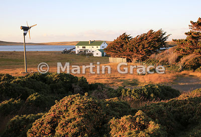 Darwin House, Darwin, East Falkland in evening sunlight - tourist accommodation in camp (ie outside Stanley) with the ever-pr...