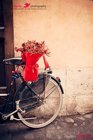 Bicycle with chili basket, vintage style, Rome, Italy