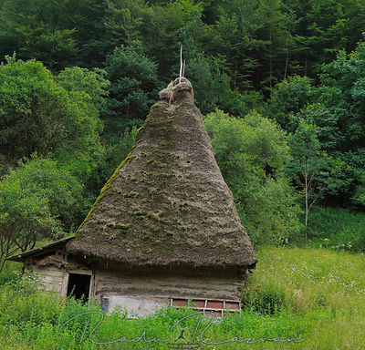 Traditional Transylvanian house