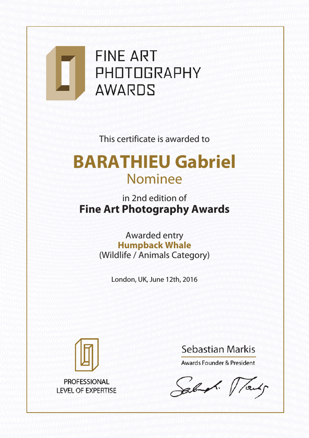 Fine Art Photography Award 2016