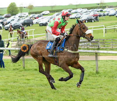 Race 8 - PTP Flat Race Div II - The Quorn at Garthorpe