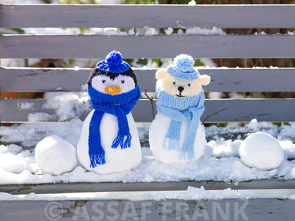 Penguin and Bear snowman on bench covered with snow outdoors