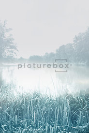 An atmospheric image of a lake on a misty morning.