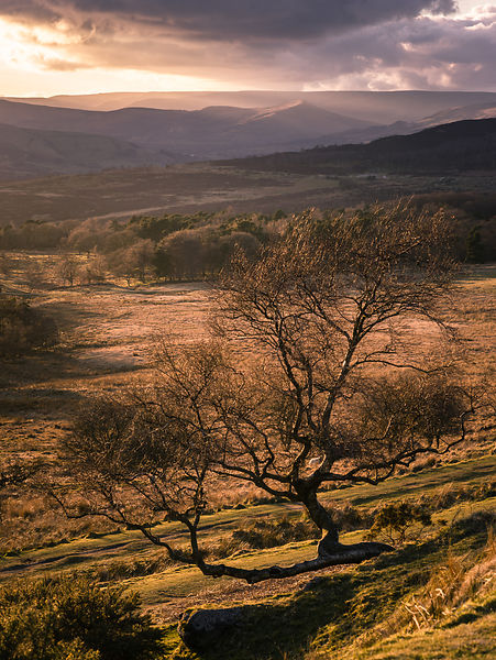 March sunset on the Longshaw Estate