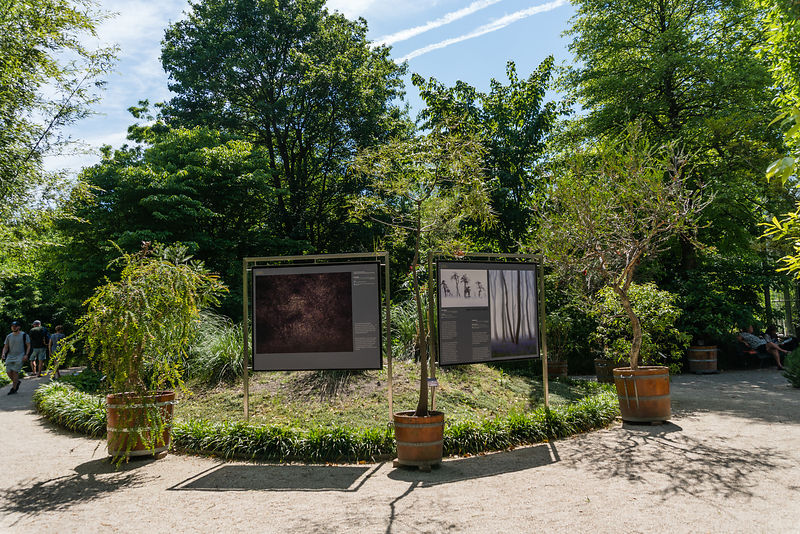 Exhibition of great photography in a beautiful botanical garden