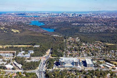 Frenchs Forest to Sydney CBD