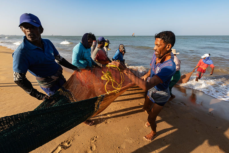 Fishermen Dragging in the Trawl Net