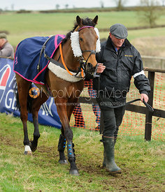 Race 2 - PPORA Members - The Cottesmore Point-to-point 26/2